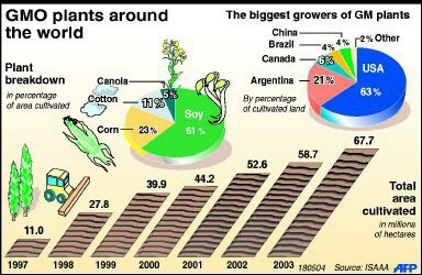 GMO plants around the world - 1997, 1998, 1999, 2000, 2001, 2002, 2003