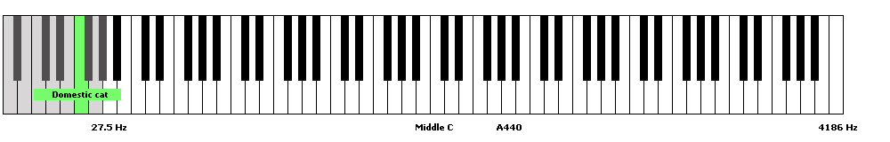 domestic cat frequency range piano keyboard