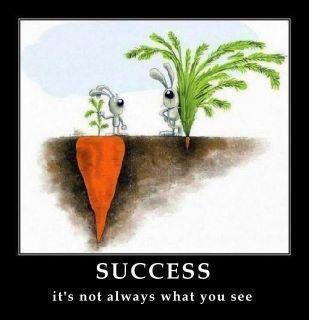 success_carrot.jpg